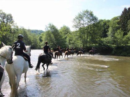 vakantiehuis met paardrijden in Durbuy Ardennen